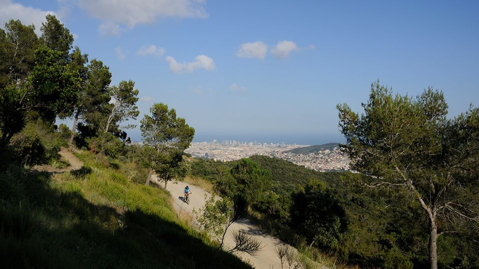 Things to do in Barcelona - Collserola Park